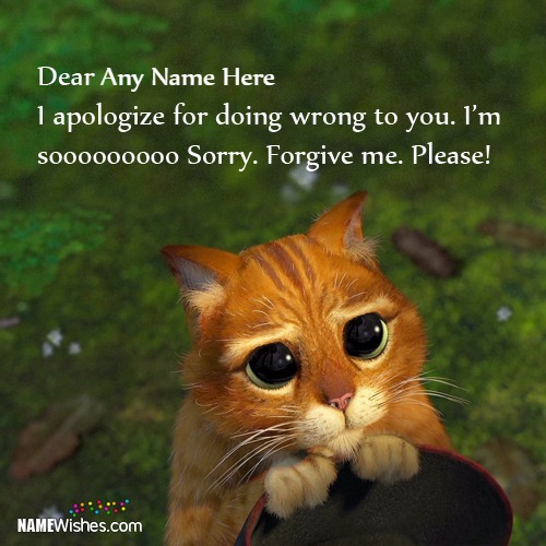 Write Name On Cutest Sorry Images